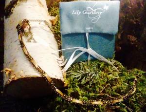 Lily et le jardin perdu